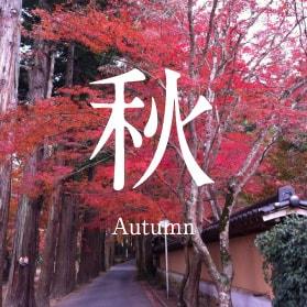 秋 Autumn